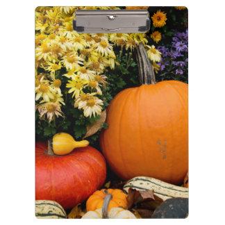 Colorful fall decorative pumpkin display clipboard