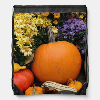 Colorful fall decorative pumpkin display drawstring backpack