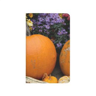 Colorful fall decorative pumpkin display journal