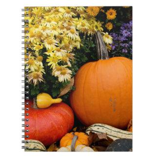 Colorful fall decorative pumpkin display notebook