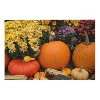 Colorful fall decorative pumpkin display wood print
