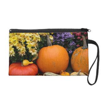 Colorful fall decorative pumpkin display wristlet purse