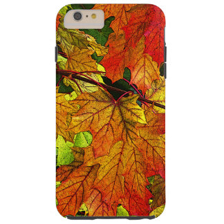 Colorful Fall Foliage iPhone 6 Plus Case