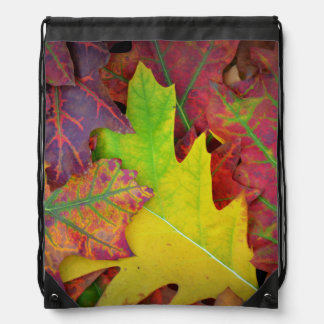 Colorful Fall Leaves Backpack