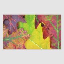 Colorful Fall Leaves Rectangular Sticker