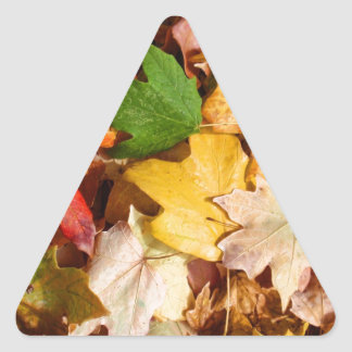 Colorful Fall Leaves Triangle Sticker