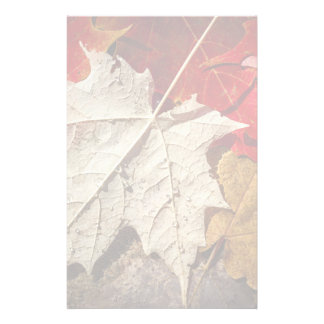 Colorful Fall Maple Leaves Floating Stationery