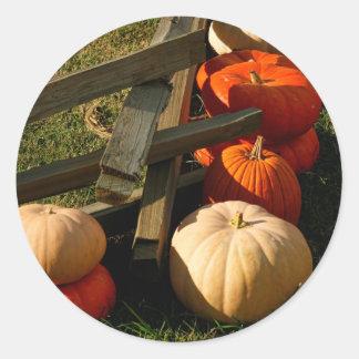 Colorful Fall Pumpkins Classic Round Sticker