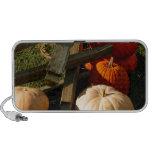 Colorful Fall Pumpkins Mini Speakers