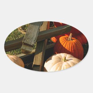 Colorful Fall Pumpkins Oval Sticker