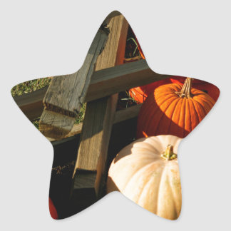 Colorful Fall Pumpkins Star Sticker
