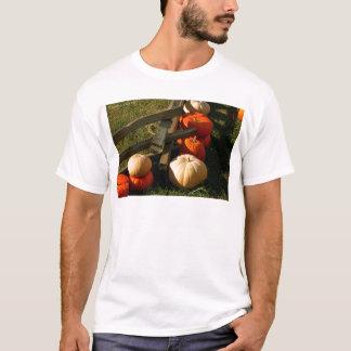 Colorful Fall Pumpkins T-Shirt