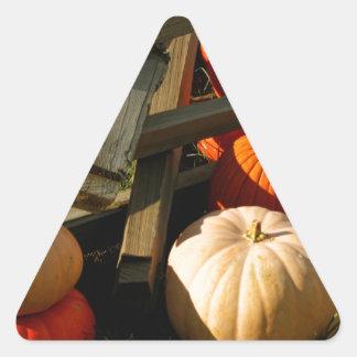 Colorful Fall Pumpkins Triangle Sticker
