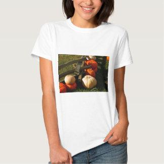 Colorful Fall Pumpkins Tshirt