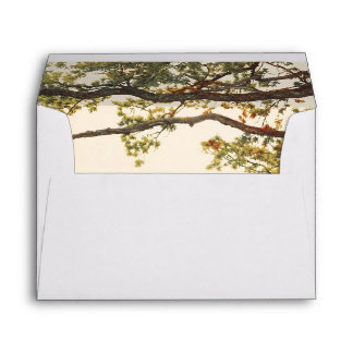 Colorful Fall Tree Leaves and Branches Rustic Envelope