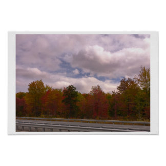 Colorful Fall Trees Poster