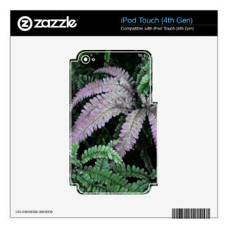 Colorful Ferns iPod Touch 4G Skins