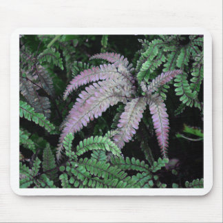 Colorful Ferns Mouse Pad