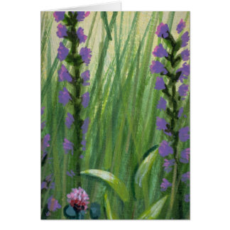 Colorful Field Grasses Cards