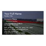 """Colorful field in the """"Bollenstreek"""" region, Nethe Business Card"""