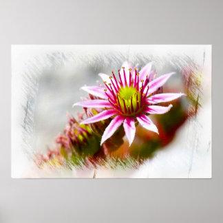 Colorful flower art design poster