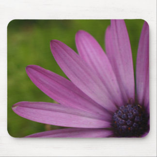 Colorful flower mousepad purple african daisy gift