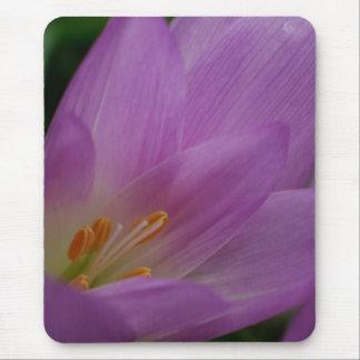 Colorful flower mousepads bulk discount unique