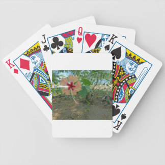 colorful flower bicycle playing cards