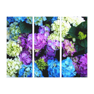 Colorful, Flowers ,Background Canvas Canvas Print