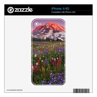 Colorful Flowers in Rainier National Park Skins For The iPhone 4