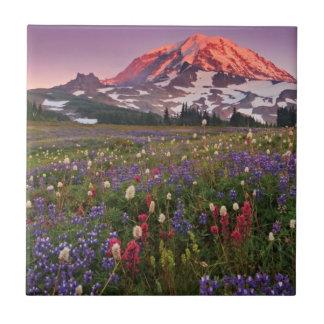Colorful Flowers in Rainier National Park Tile