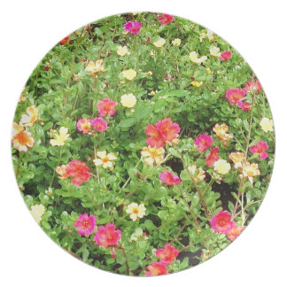 Colorful Flowers Plate