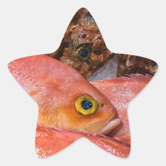Colorful fresh fish on a market star sticker
