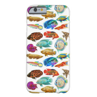 Colorful Freshwater Aquarium Fish iPhone 6 Case