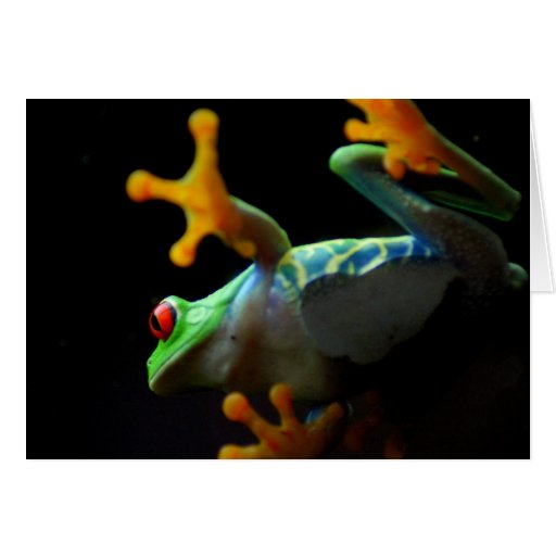 Colorful Frog Walking across the Glass Greeting Card