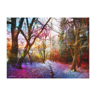 Colorful Frosted Forest Landscape Canvas Print