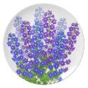 Colorful Garden Delphinium Larkspur Flowers Plate