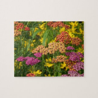 Colorful Garden Flowers Puzzle