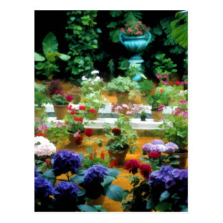 Colorful Garden in Andalucia, Spain - Roses Postcard