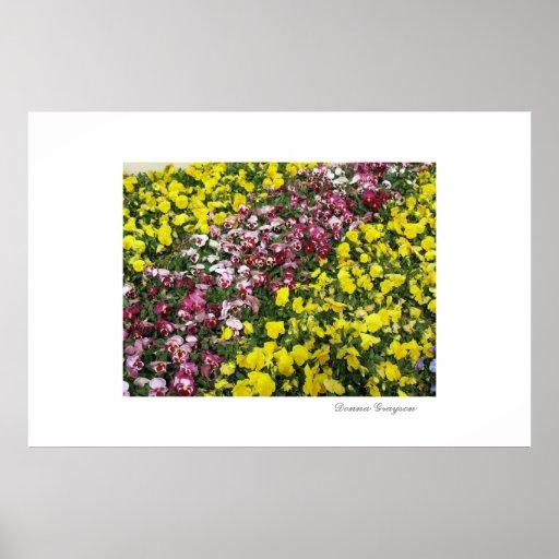 Colorful Garden Print