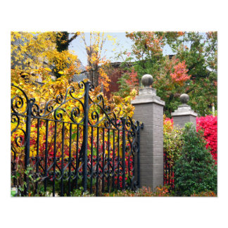 Colorful Gate with Leaves and Trees in Louisville Photo Print
