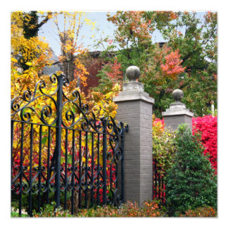 Colorful Gate with Leaves and Trees Square Photo Print