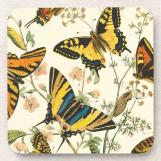 Colorful Gathering of Butterflies and Caterpillars Drink Coasters