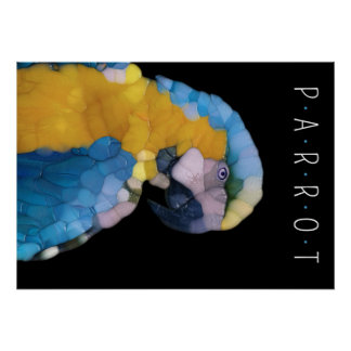 Colorful Glass Parrot Poster