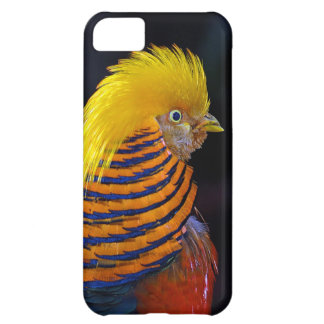 Colorful golden pheasant print cover for iPhone 5C