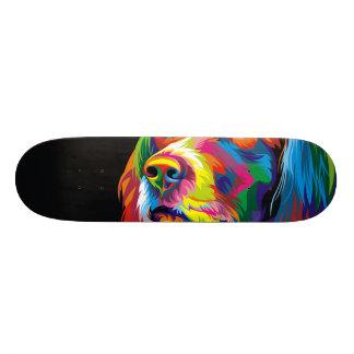 Colorful golden retriever skateboard