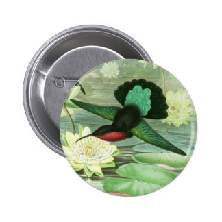 Colorful Gould Hummingbird Round Button Pin