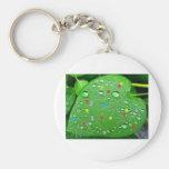 colorful green leaf key chains