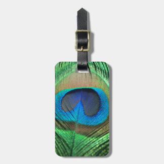Colorful Green Peacock Luggage Tag