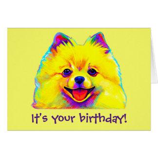 Colorful Happy Birthday Pomeranian Card